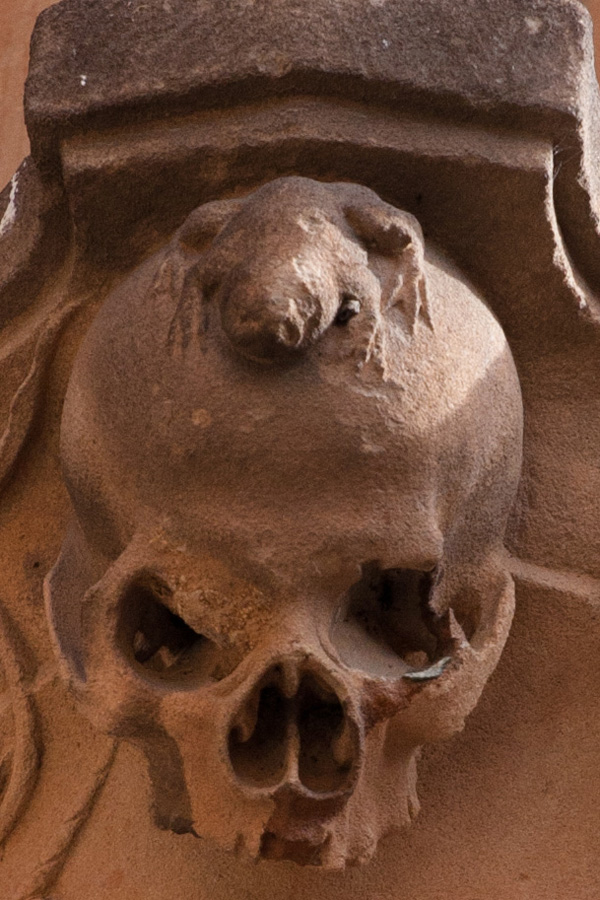 Rana en la fachada de la Universidad de Salamanca, España